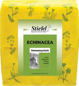 Echinacea rozdrobniona 500g - wzmacnia odporność