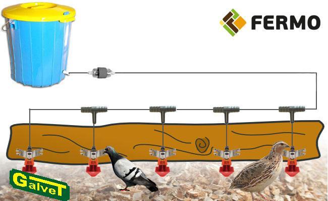 Kompletna linia pojenia gołębi i przepiórek - na 35-60 ptaków, system pojenia, poidło kropelkowe