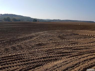 OKAZJA!!!, Ziemia, Grunty Rolne, 160 ha, Magazyn, Wielkopolska, Powiat