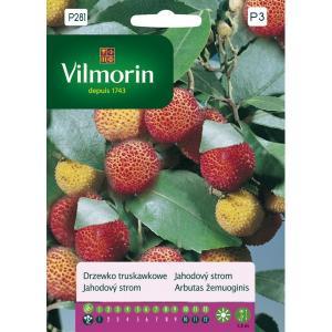 Drzewko truskawkowe VILMORIN