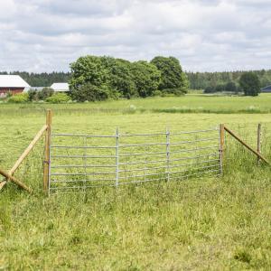 Bramka dla owiec 2,0 m