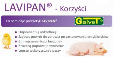 LAVIPAN L050 TRAWIENIE 20kg preparat probiotyczny, m-ka paszowa uzupełniająca dla drobiu, trzody