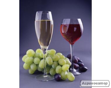Wino domowe białe