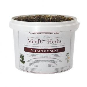 Vital'Immune – naturalne wspomaganie odporności 1kg