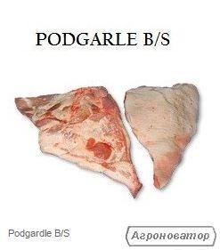 PODGARLE B/S