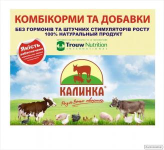Dodatki białkowo-witaminowe dla świń