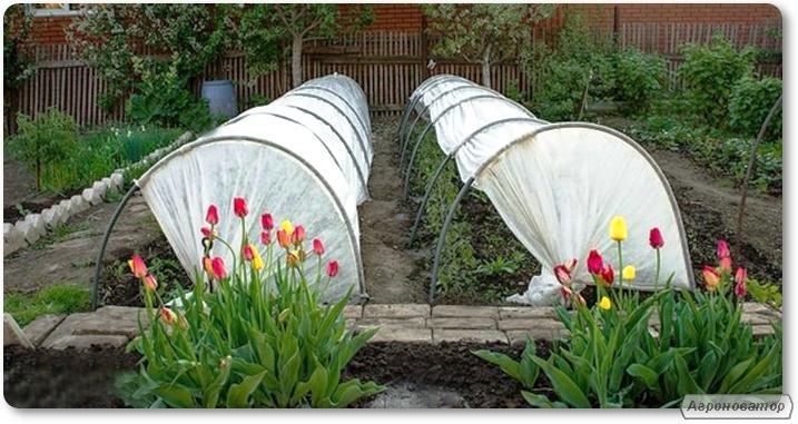 Tunele z agrowłókniny