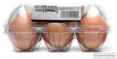 Jaja inkubacyjne kurze