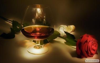 Alkohol 4 gwiazdki
