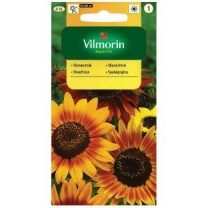 Słonecznik kwiatowy Mix kolorów VILMORIN 5g