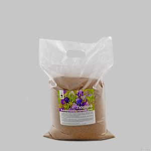 Nasiona lucerny, nadezhda