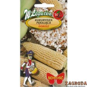 Kukurydza pękająca Dobosz LEGUTKO 10g