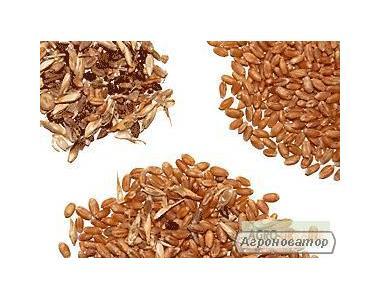 Czyszczenie nasion i zbóż oczyszczanie nasion soi