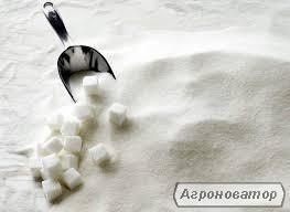 Cukier buraczany