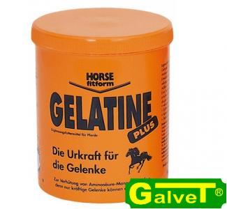 Gelatine Plus 1kg