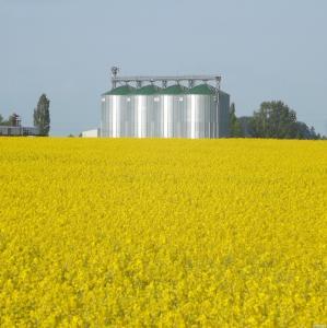 grupy producentów rolnych - pomoc przy tworzeniu, obsługa