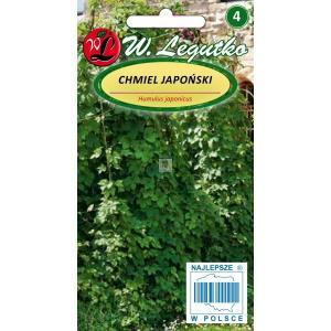 Chmiel japoński zielony LEGUTKO