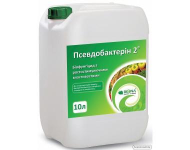 BacterPlant