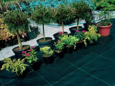 Tkanina ogrodnicza 1,6×100 ściółkująca