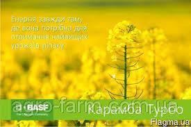 Fungicydy