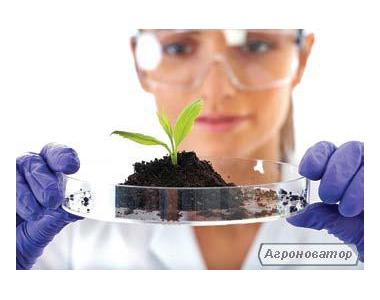 Herbicydy