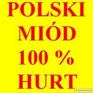 MIÓD WIELOKWIATOWY.i inne. Polska 100%. Cena za 1 kg - 16.70 zł
