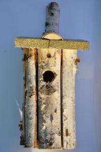 Budka dla ptaków 03