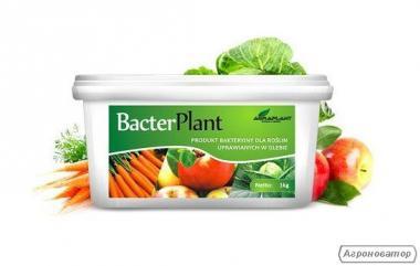 BacterPlant 1 kg - Bakterie