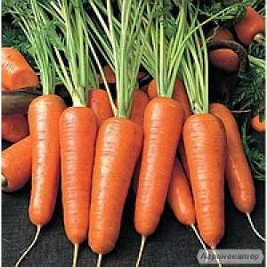 Nasiona warzyw