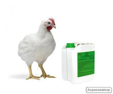 Inne preparaty weterynaryjne dla zwierząt