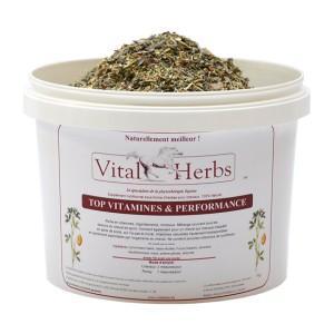 Top Vitamines&Performances – mieszanka witamin, mikropierwiastków i minerałów 1kg