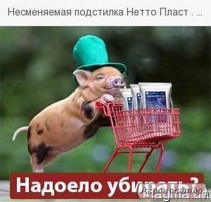 Artykuły dla zwierząt