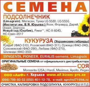 Nasiona kukurydzy, gibrid monsanto