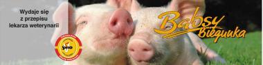 Babsy Biegunka- Pasza lecznicza dla prosiąt młodszych (8-15 kg)-25kg