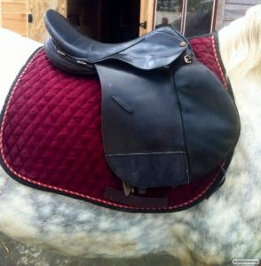 Artykuły dla zwierząt dla koni