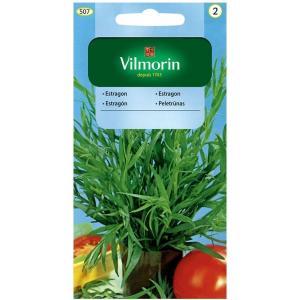 Estragon - zioła VILMORIN