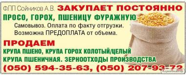 Kasza grochowa