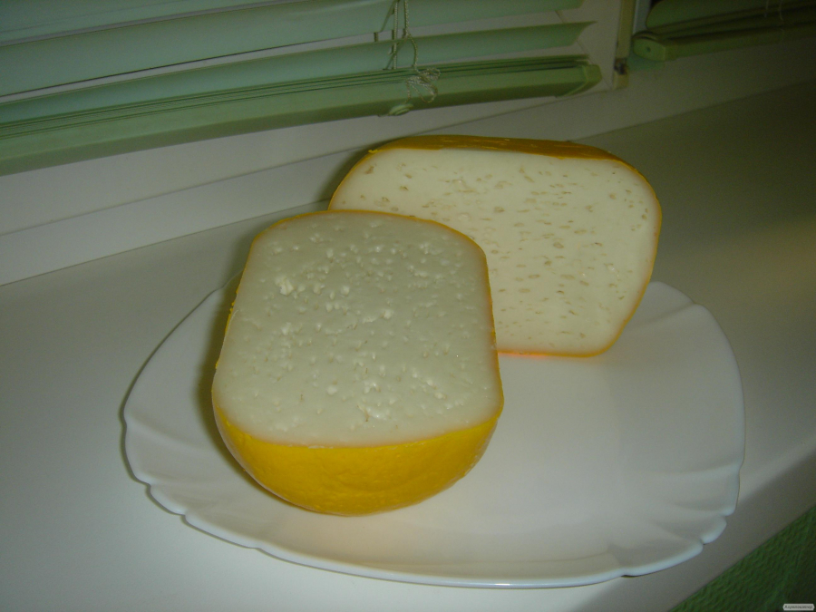 Козий сыр с пепсином в домашних условиях 905