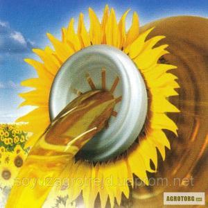 Nasiona słonecznika, tisa