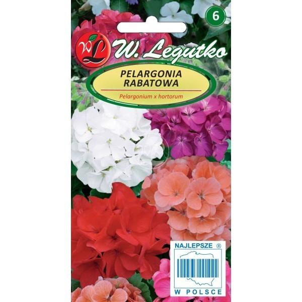 Pelargonia rabatowa Mix kolorów F2 LEGUTKO