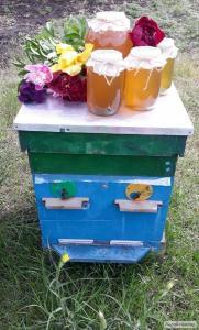 Artykuły dla zwierząt dla pszczół