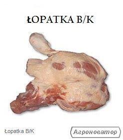 ŁOPATKA B/K