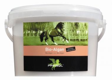 BIO-ALGAN - algi 2kg