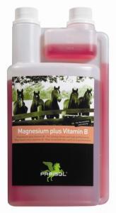 Magnez+witamina B w płynie 1l