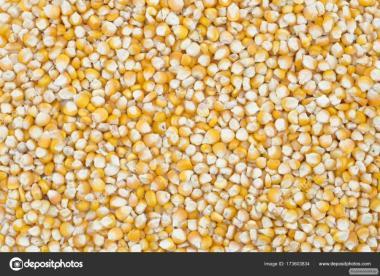 Kukurydza woskowa