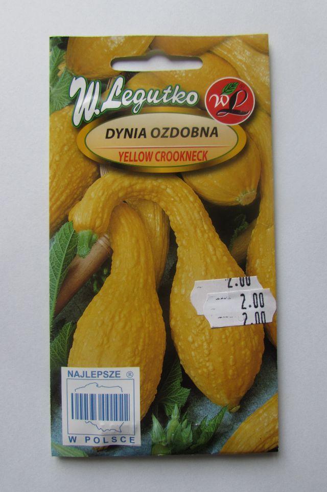 Dynia ozdobna Yellow Crockneck W.Legutko