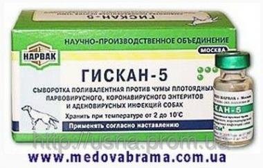 Surowice, immunoglobuliny