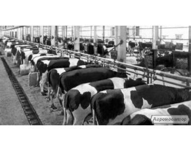 Sprzedaż nieczynnej farmy do hodowli zwierząt